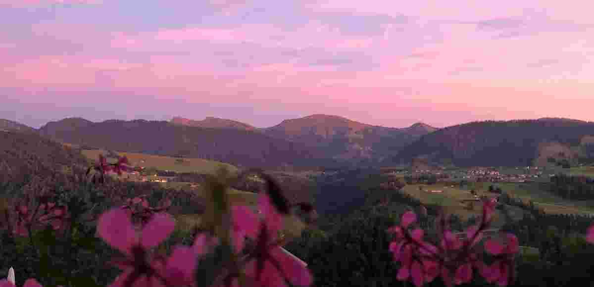 Lila Abendlicht am Hochgrat