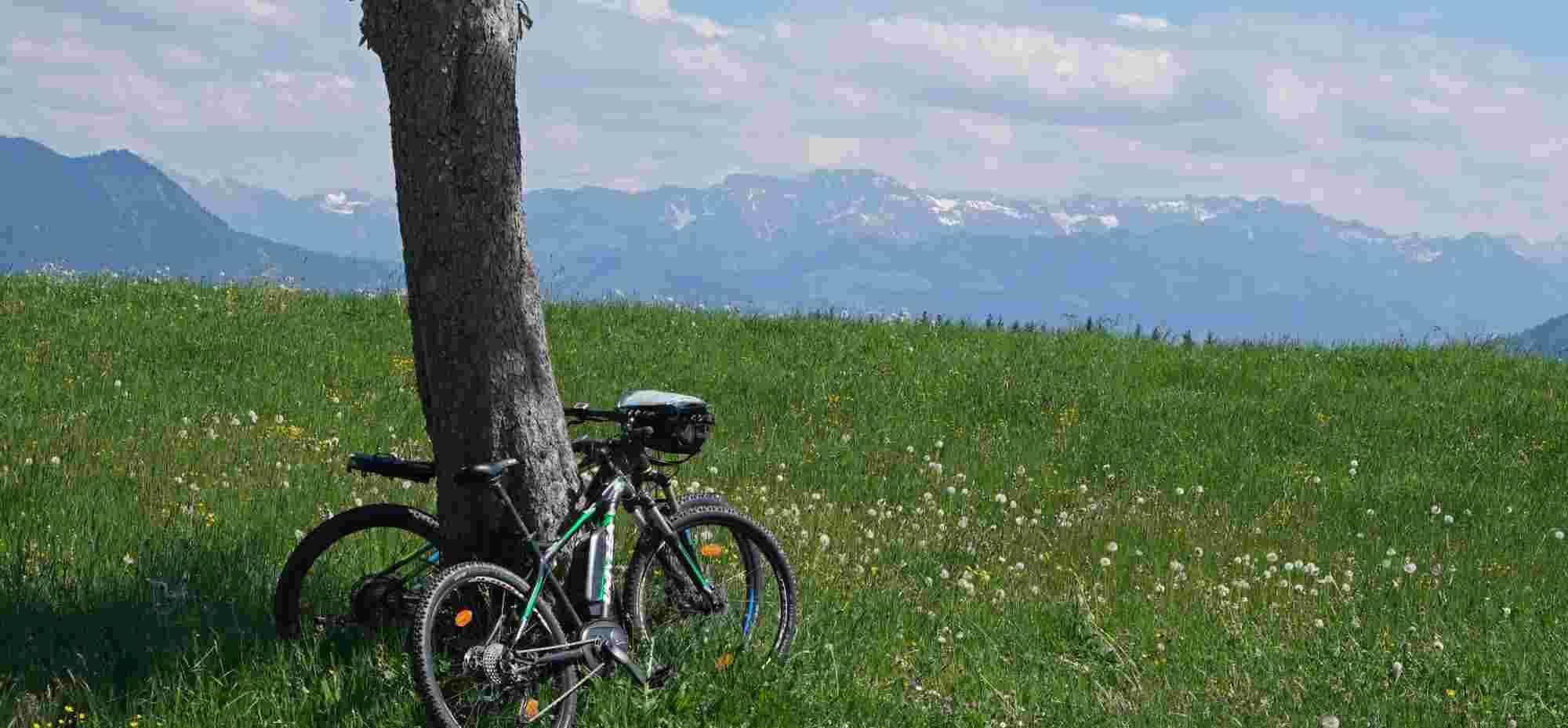 E-Mountain-Biken