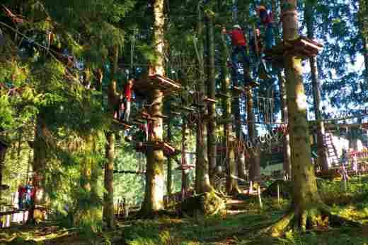 Kletternde Kinder und Erwachsene im Kletterwald Bärenfalle im Allgäu