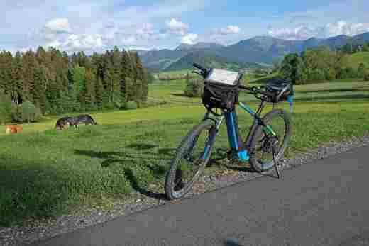 Blaues E-Mountainbike steht vor einer saftig grünen Wiese, auf der drei Kühe grasen
